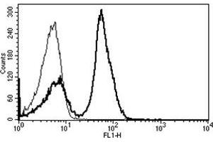 Flow Cytometry (FACS) image for anti-CD28 (CD28) antibody (FITC) (ABIN1106184)