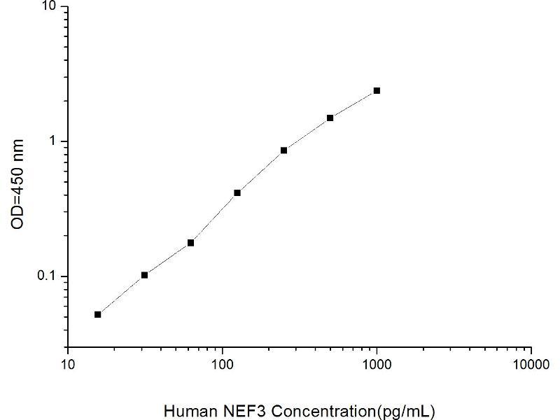 Neurofilament Triplet M Protein (NEFM) ELISA Kit (2)
