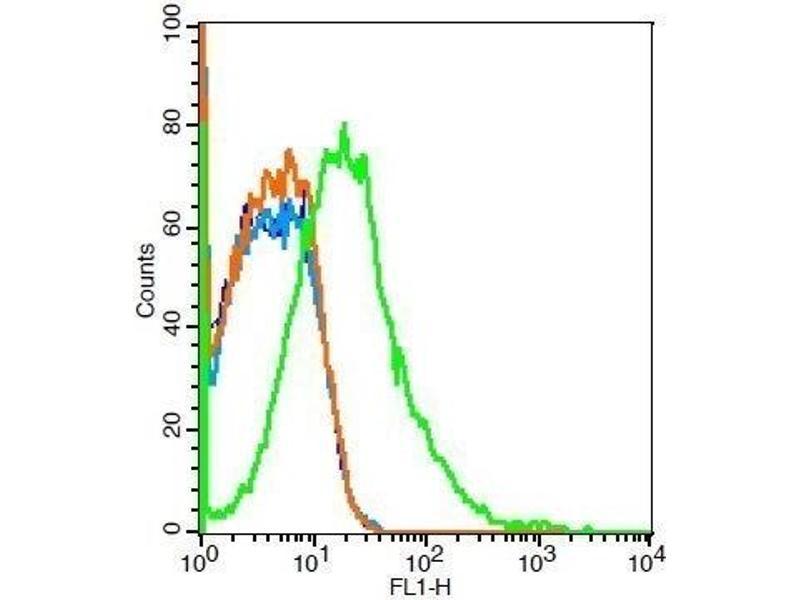 Flow Cytometry (FACS) image for anti-Met Proto-Oncogene (MET) (AA 25-75) antibody (ABIN671661)