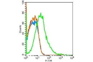 Flow Cytometry (FACS) image for anti-Met Proto-Oncogene (MET) (AA 25-75) antibody (ABIN671661)