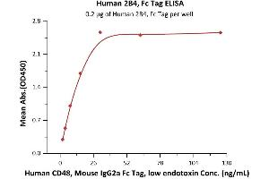 Image no. 1 for Natural Killer Cell Receptor 2B4 (CD244) (AA 22-221) (Active) protein (Fc Tag) (ABIN2180732)