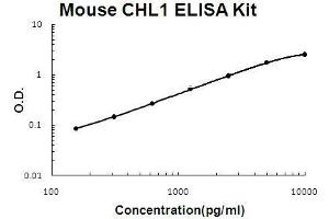 Image no. 1 for Cell Adhesion Molecule with Homology To L1CAM (Close Homolog of L1) (CHL1) ELISA Kit (ABIN5510734)