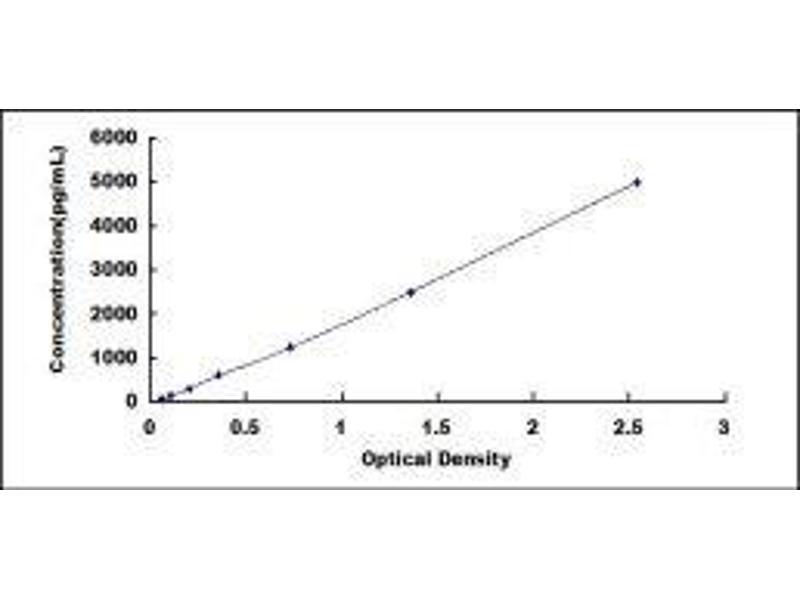 Myeloid Differentiation Primary Response Gene (88) (MYD88) ELISA Kit