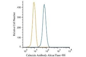 Flow Cytometry (FACS) image for anti-Calnexin (CANX) (AA 550-591), (C-Term) antibody (ABIN151474)
