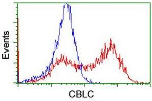 Image no. 2 for anti-Cas-Br-M (Murine) Ecotropic Retroviral Transforming Sequence C (CBLC) (AA 244-474) antibody (ABIN1491263)