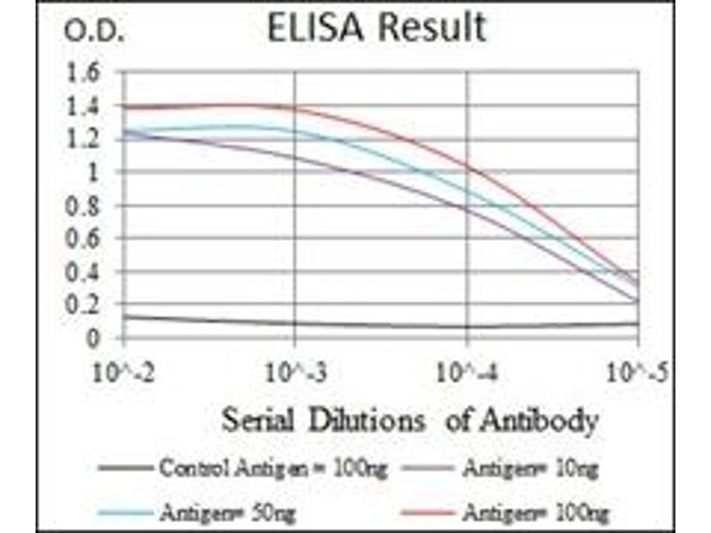 ELISA image for anti-Heat Shock Transcription Factor 4 (HSF4) antibody (ABIN1107497)
