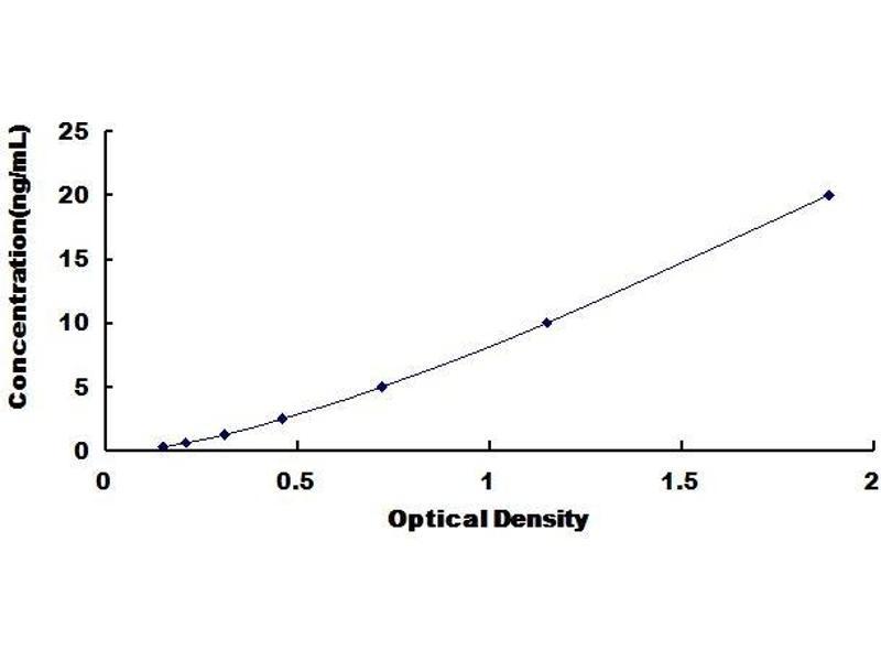 Histone Deacetylase 6 (HDAC6) ELISA Kit