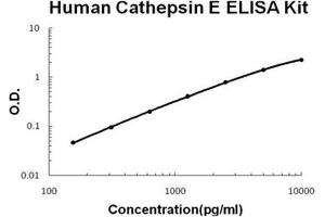 Image no. 1 for Cathepsin E (CTSE) ELISA Kit (ABIN1889446)