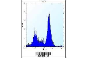 Flow Cytometry (FACS) image for anti-Stromal Cell Derived Factor 2-Like 1 (SDF2L1) (AA 160-189), (C-Term) antibody (ABIN657402)