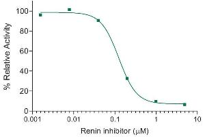 Image no. 1 for SensoLyte® 520 Mouse Renin Assay Kit (ABIN1882547)