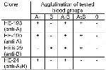 Image no. 1 for anti-Blood Group A1B antibody (ABIN93920)