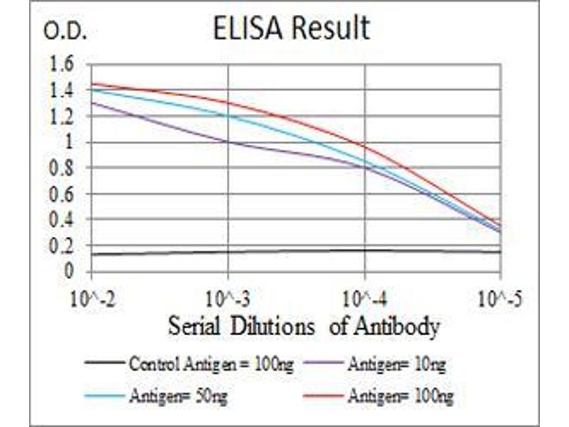 ELISA image for anti-Luteinizing Hormone/choriogonadotropin Receptor (LHCGR) antibody (ABIN5542336)