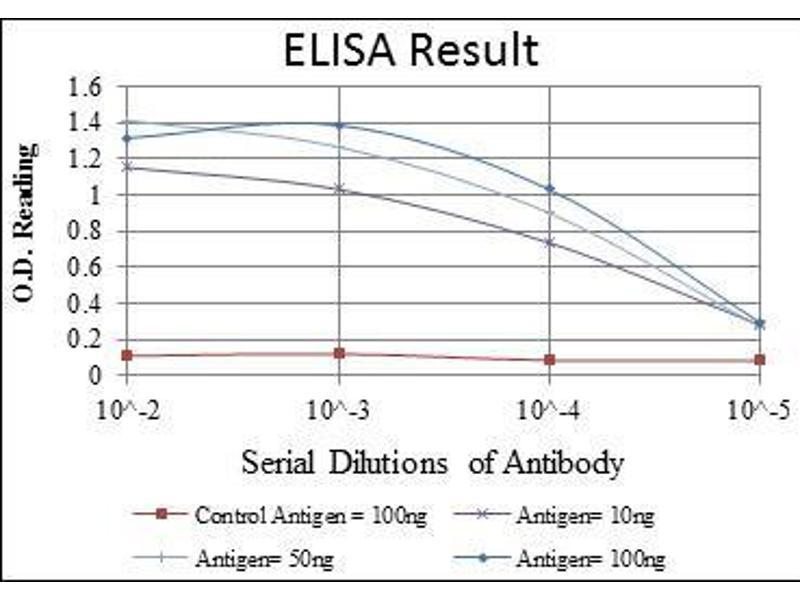 ELISA image for anti-Mitogen-Activated Protein Kinase Kinase 4 (MAP2K4) antibody (ABIN969268)