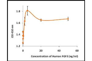 Image no. 1 for Fibroblast Growth Factor 3 (FGF3) (Active) protein (ABIN5509489)