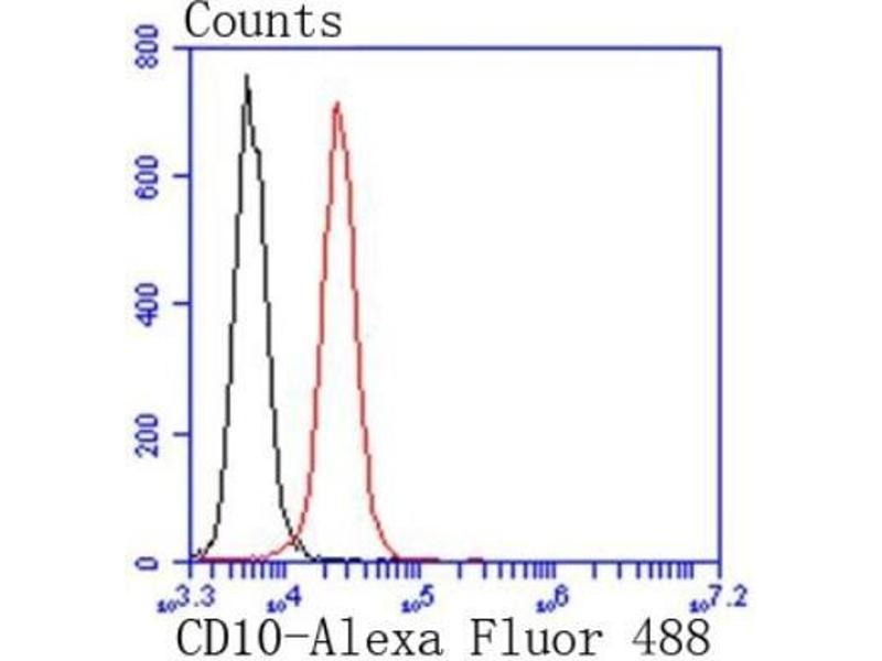 Flow Cytometry (FACS) image for anti-Membrane Metallo-Endopeptidase (MME) (AA 1-250) antibody (ABIN5949567)