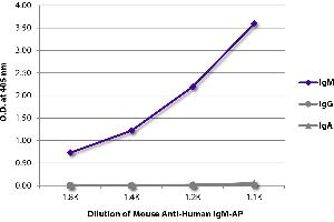 Image no. 1 for Mouse anti-Human IgM (Heavy Chain) antibody (Alkaline Phosphatase (AP)) (ABIN135611)