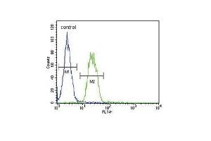 Flow Cytometry (FACS) image for anti-S6A12 (AA 9-38), (N-Term) antibody (ABIN654460)