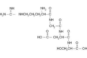 Image no. 1 for Arg-Gly-Asp-Ser peptide (ABIN399260)