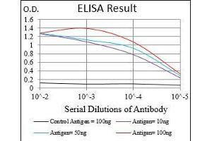 ELISA image for anti-BCL2-Associated Agonist of Cell Death (BAD) antibody (ABIN4881163)