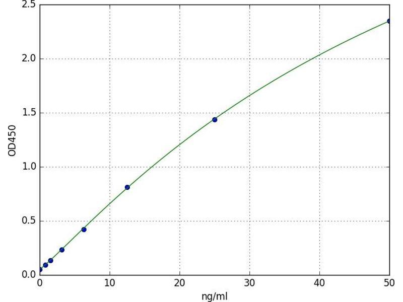 Retinoid X Receptor, beta (RXRB) ELISA Kit