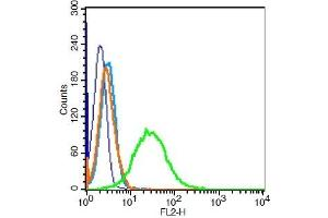 Flow Cytometry (FACS) image for anti-Vimentin antibody (VIM) (AA 416-466) (ABIN672786)