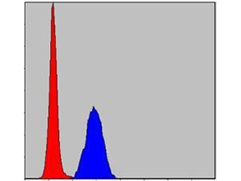 Flow Cytometry (FACS) image for anti-MAPK3 antibody (Mitogen-Activated Protein Kinase 3) (ABIN969277)
