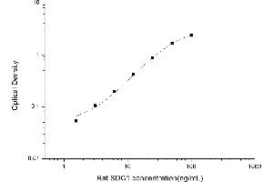 Image no. 1 for Syndecan 1 (SDC1) ELISA Kit (ABIN6963244)
