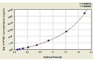 Image no. 1 for Cytochrome P450, Family 4, Subfamily F, Polypeptide 3 (CYP4F3) ELISA Kit (ABIN368319)