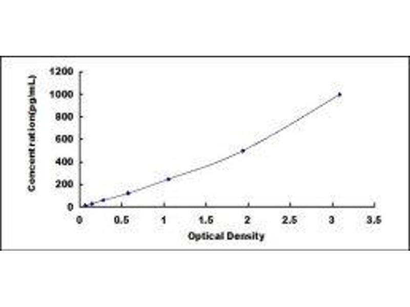 Fibroblast Growth Factor 10 (FGF10) ELISA Kit