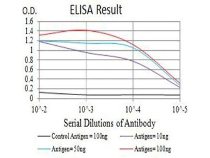 ELISA image for anti-ARP3 Actin-Related Protein 3 Homolog (Yeast) (ACTR3) (AA 287-418) antibody (ABIN5683018)