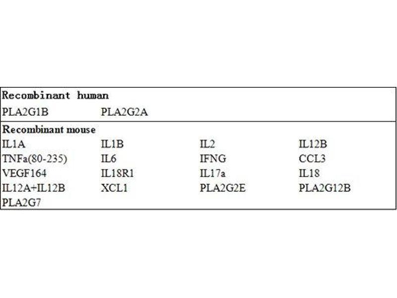 Phospholipase A2 (YWHAZ) ELISA Kit (2)