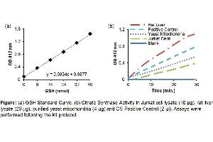 Image no. 1 for Citrate Synthase Activity Colorimetric Assay Kit (ABIN1685877)