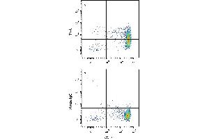 Flow Cytometry (FACS) image for anti-Neurotrophic Tyrosine Kinase, Receptor, Type 1 (NTRK1) (AA 33-407) antibody (PE) (ABIN4897419)