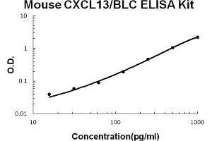 Image no. 1 for Chemokine (C-X-C Motif) Ligand 13 (CXCL13) ELISA Kit (ABIN6720058)