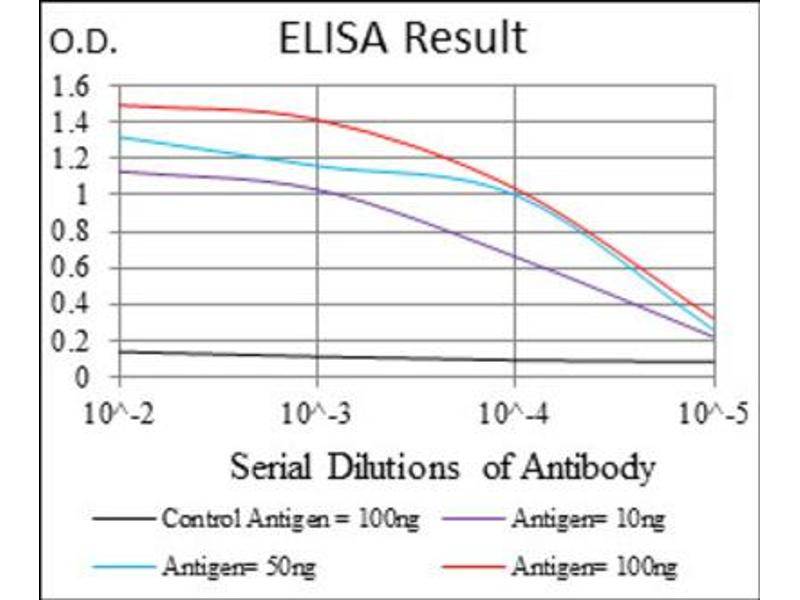 ELISA image for anti-Interleukin 1, beta (IL1B) antibody (ABIN1845349)