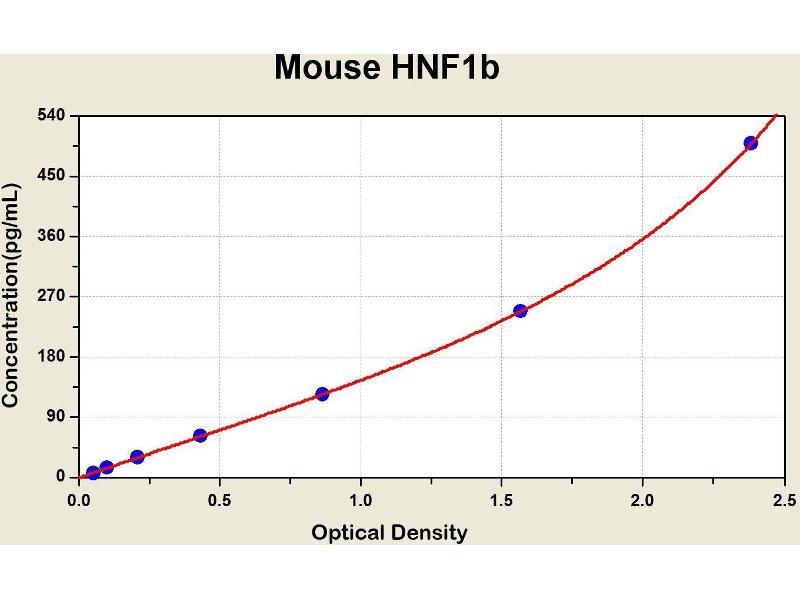 HNF1 Homeobox B (HNF1B) ELISA Kit