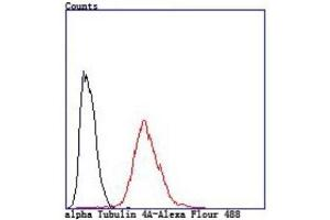 Flow Cytometry (FACS) image for anti-Tubulin, alpha 4a (TUBA4A) (AA 1-200) antibody (ABIN5953336)