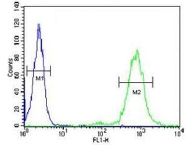 Image no. 3 for anti-CD69 (CD69) (AA 119-148) antibody (ABIN3030416)