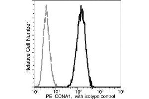 Flow Cytometry (FACS) image for anti-Cyclin A1 antibody (CCNA1) (AA 1-465) (PE) (ABIN2213209)