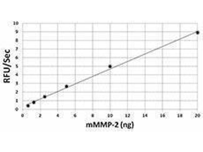 ELISA image for Matrix Metalloproteinase 2 (MMP2) (C-Term), (AA 34-662) (Active) Protein (ABIN2666506)