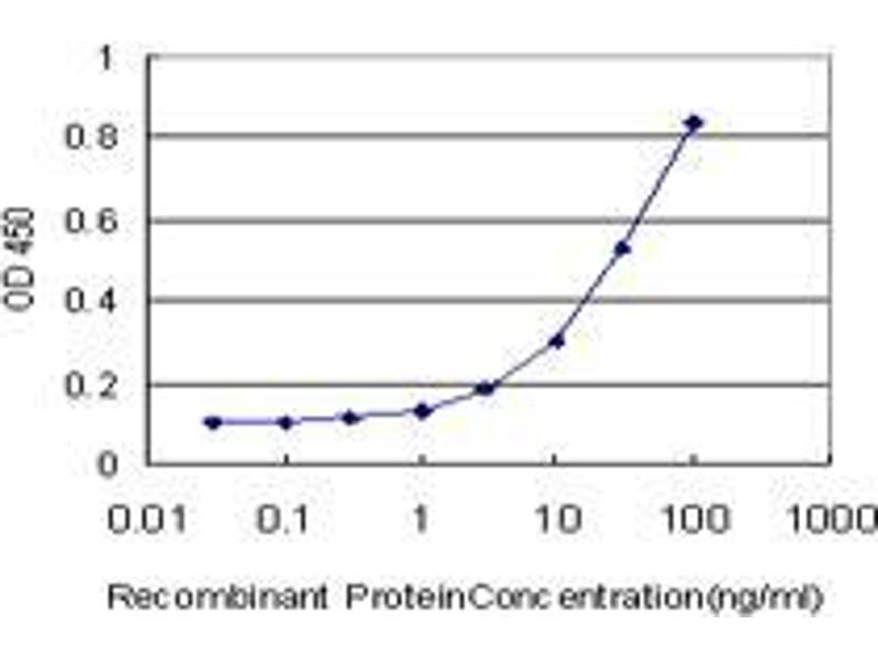 Immunohistochemistry (IHC) image for anti-Phosphatase, Orphan 1 (PHOSPHO1) (AA 168-267) antibody (ABIN396221)