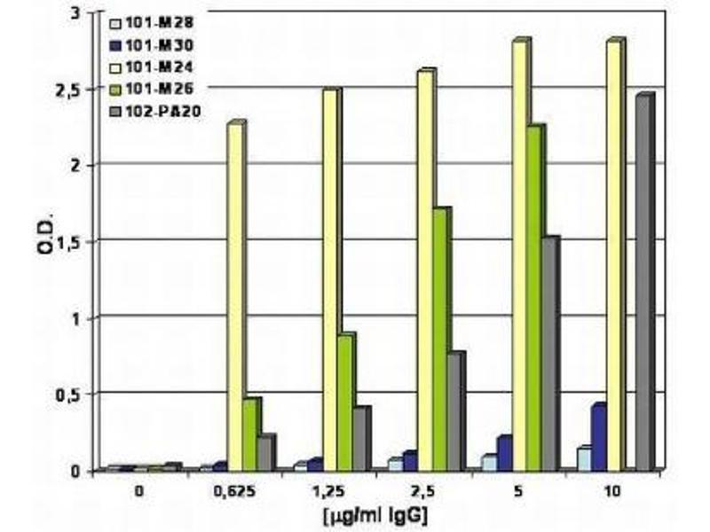 ELISA image for anti-Fms-Related tyrosine Kinase 1 (Vascular Endothelial Growth Factor/vascular Permeability Factor Receptor) (FLT1) antibody (ABIN269286)