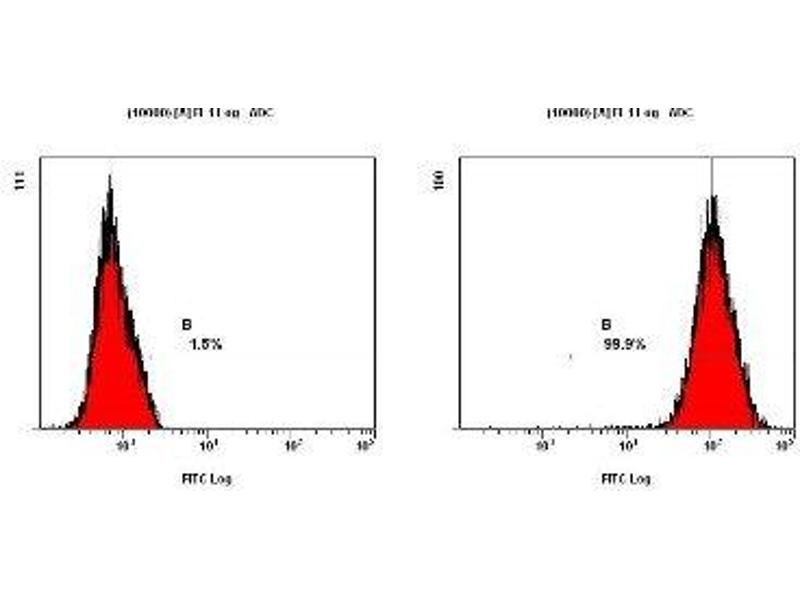Flow Cytometry (FACS) image for anti-Survivin antibody (BIRC5) (Cytoplasmic Form) (ABIN153011)
