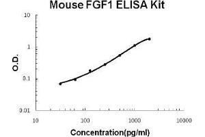 ELISA image for FGF1 ELISA Kit (Fibroblast Growth Factor 1 (Acidic)) (ABIN1889349)