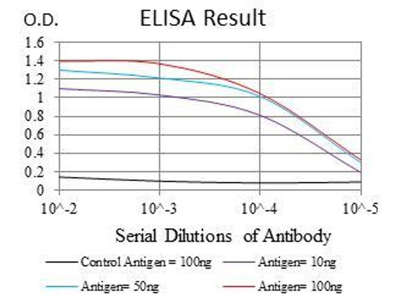 ELISA image for anti-ROCK1 antibody (rho-Associated, Coiled-Coil Containing Protein Kinase 1) (ABIN969563)