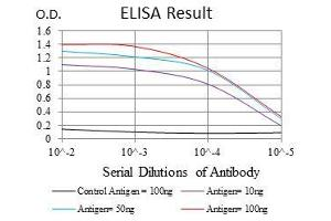 ELISA image for anti-rho-Associated, Coiled-Coil Containing Protein Kinase 1 (ROCK1) antibody (ABIN969563)
