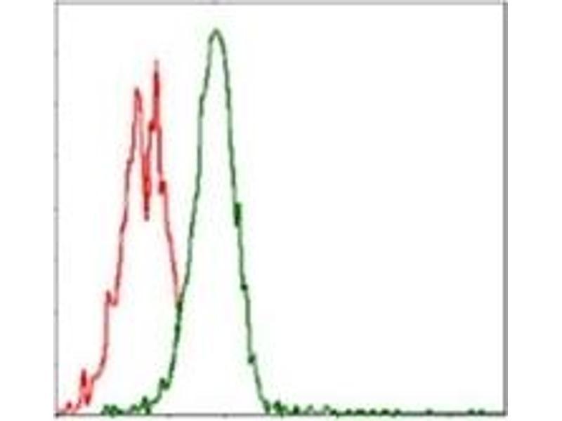 Flow Cytometry (FACS) image for anti-RPS6KB1 antibody (Ribosomal Protein S6 Kinase, 70kDa, Polypeptide 1) (ABIN1108904)