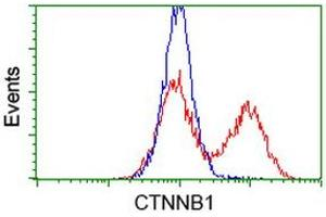 Flow Cytometry (FACS) image for anti-CTNNB1 antibody (Catenin (Cadherin-Associated Protein), beta 1, 88kDa) (ABIN2454167)