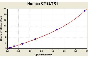 Image no. 1 for Cysteinyl Leukotriene Receptor 1 (CYSLTR1) ELISA Kit (ABIN1114510)