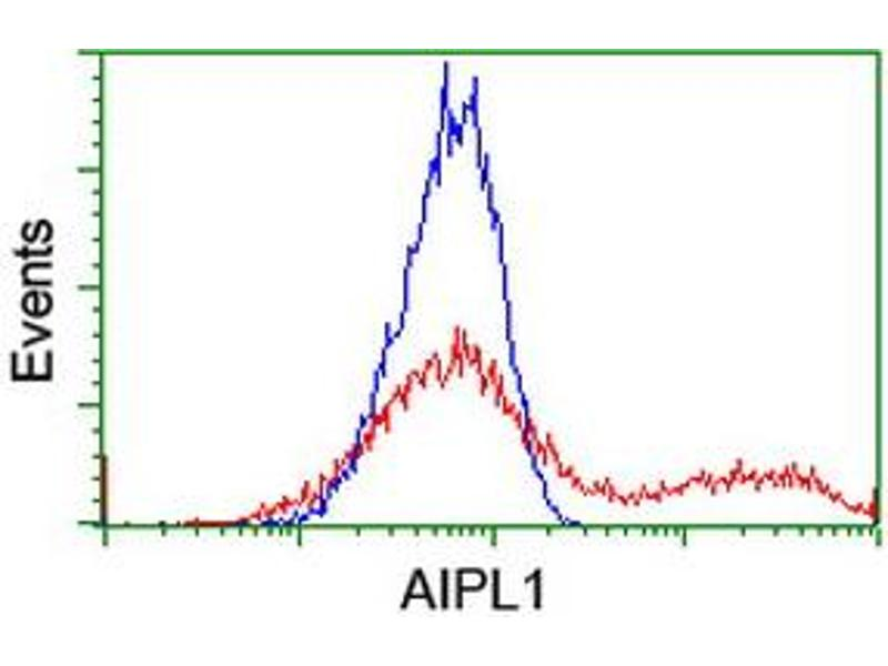 Flow Cytometry (FACS) image for anti-Aryl Hydrocarbon Receptor Interacting Protein-Like 1 (AIPL1) antibody (ABIN2455132)